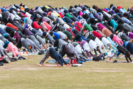 Atlanta, GA, USA - April 8, 2018:  Dozens of people do downward facing dog pose as they take part in a massive group yoga class in Piedmont Park on April 8, 2018 in Atlanta, GA.