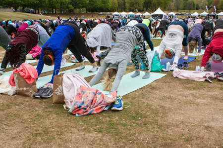 Atlanta, GA, USA - April 8, 2018:  Dozens of people do the downward facing dog pose in unison as they take part in a massive group yoga class in Piedmont Park on April 8, 2018 in Atlanta, GA. Editorial