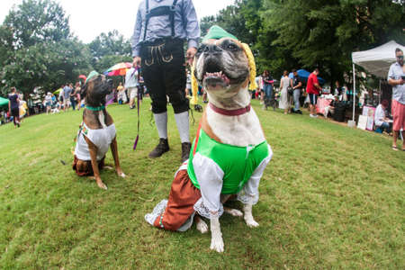 Atlanta, GA, USA - August 18, 2018:  Two dogs wear bavarian costumes as their owner wears lederhosen, at Doggy Con, a dog costume contest in Woodruff Park on August 18, 2018 in Atlanta, GA. Stock Photo - 117654350