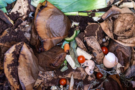 photo over a compost with leek tomatoes and coffee filters Standard-Bild