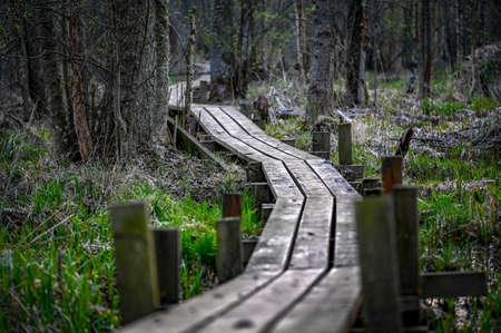 footbridge of wood through a wetland in Sweden