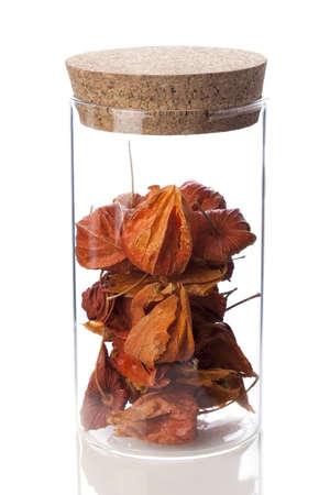 Chinese medicinal herb Jindenglong in glass bottle