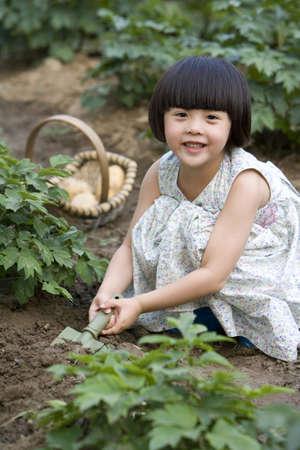 dug well: Little girl gardening