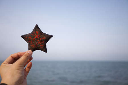 Hand holding up a starfish at the beach