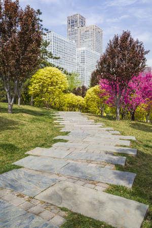 street shot: Urban park, China LANG_EVOIMAGES