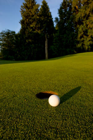 The gimme putt , golf concepts