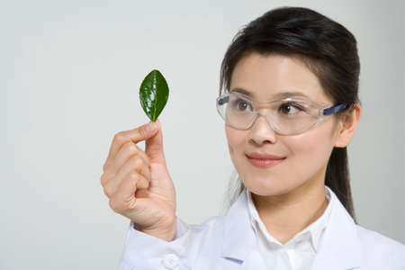 Scientist examining leaf LANG_EVOIMAGES