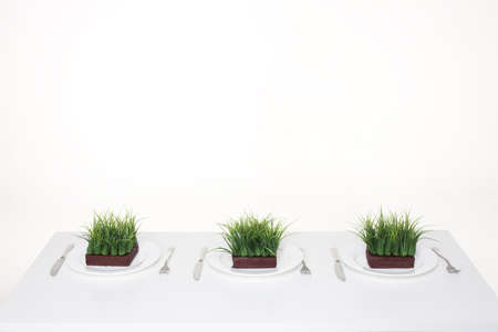things that go together: Place settings with servings of grass