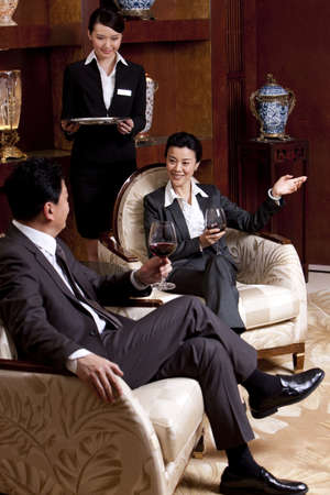 Mature businessmen having a meeting in a luxurious room