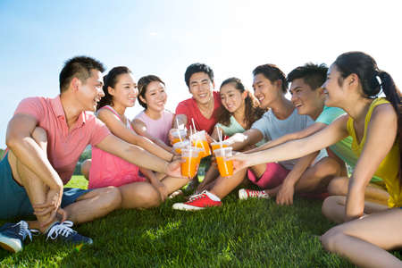 Cheerful young adults toasting with juice on grass