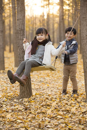 Little boy pushing his sister on a swing in autumn woods