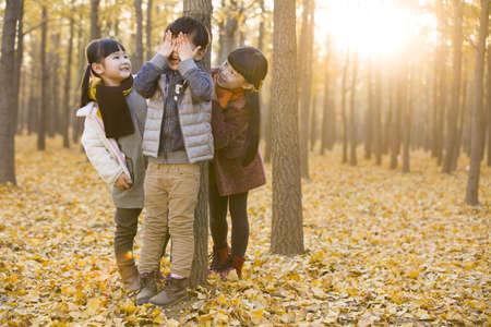 behind scenes: Three children playing hide and seek in autumn woods