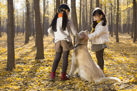Little girls playing with dog in autumn woods