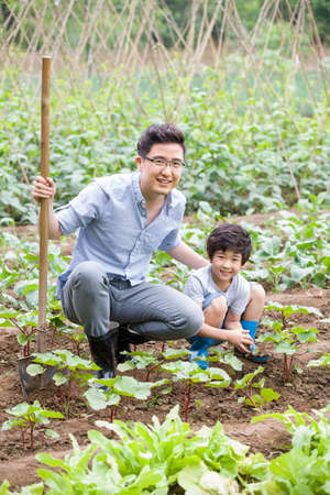 Young father and son gardening together