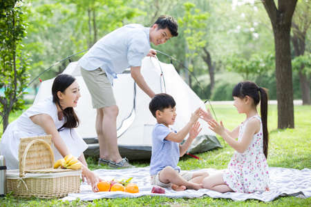 Happy young family having picnic on grass