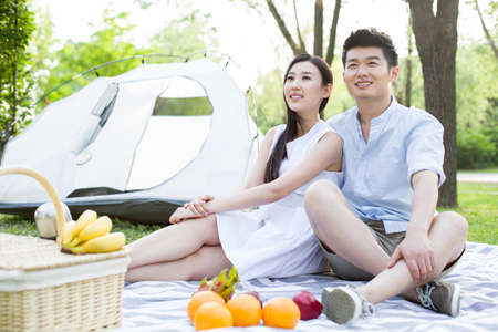 Happy young couple having picnic on grass