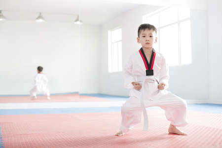 full length mirror: Cute boy practicing Tae Kwon Do LANG_EVOIMAGES