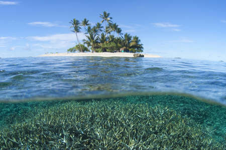 the jeep: Jeep Island, Chuuk, Micronesia LANG_EVOIMAGES