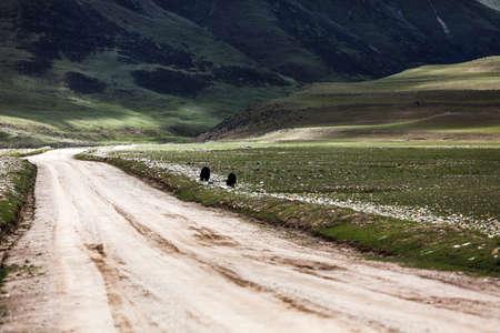 Dirt road in Tibet, China