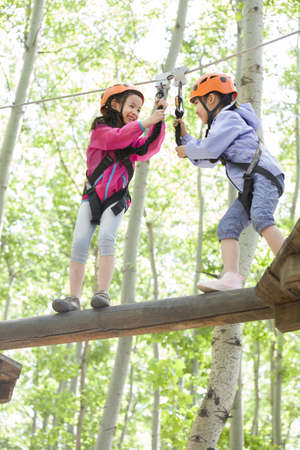 girl in full growth: Little girls playing in tree top adventure park