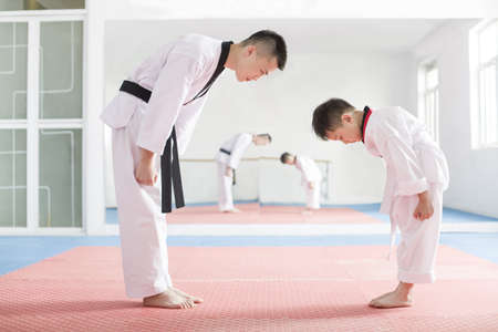 full length mirror: Young instructor teaching boy Tae Kwon Do LANG_EVOIMAGES