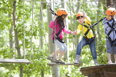 girl in full growth: Happy children playing in tree top adventure park