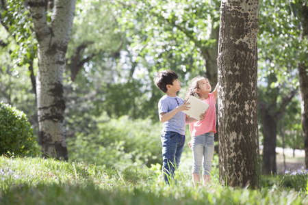 girl in full growth: Happy children playing in woods LANG_EVOIMAGES