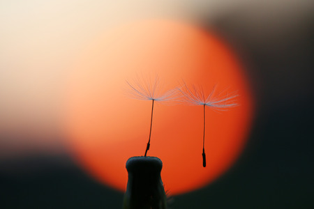 Now is the time of parting, at sunset, you will always remain in the memory Stock Photo