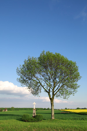 The cross on the background of rural landscape