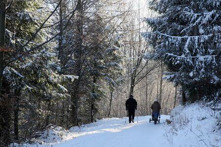 scaler: Winter walk in the snow Stock Photo