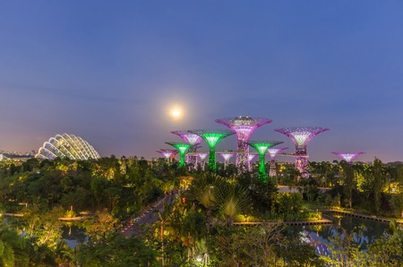 SINGAPORE - MARCH 16: Night view of Supertree Grove and Cloud Forest Dome at Gardens by the Bay on Mar 16, 2014 in Singapore. Adjacent to the Marina Reservoir and Bay Front MRT Station