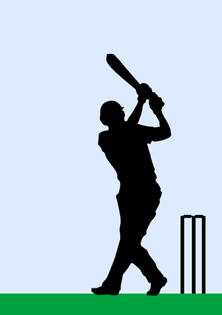pitch: Silhouette of a cricket batsman