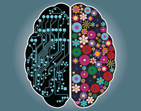 cerebral: Left and right side of the brain, logic and creativity, vector