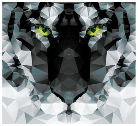 wildlife: Geometric polygon white tiger head, triangle pattern design Illustration