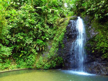 Exotic Waterfalls on Rainforest Nature