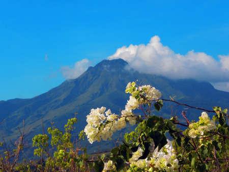 martinique: montagne pele volc�n en Martinica