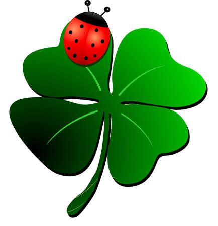 cloverleaf: Ladybug on clover picture