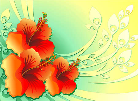 Hibiscus Exotic Flower Card