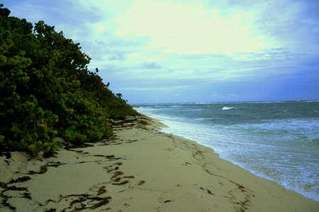 Beach Stock Photo - 57450815