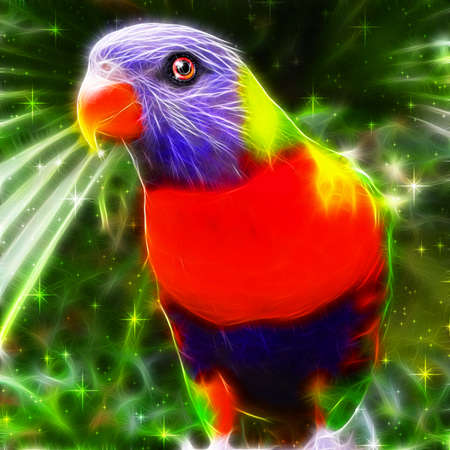 Rainbow Lorikeet in green sparkles Stock Photo - 60654641