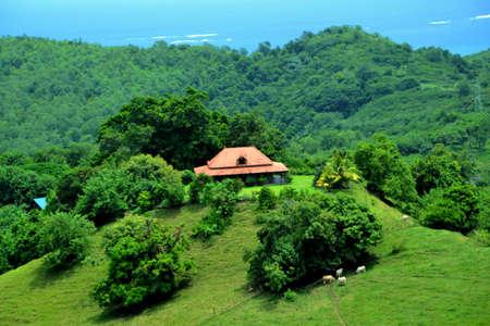 creole: Creole-style farm Stock Photo