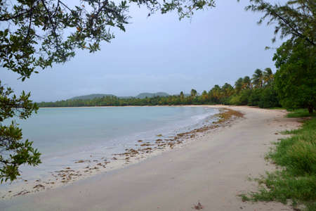 Bay with Sandy beach