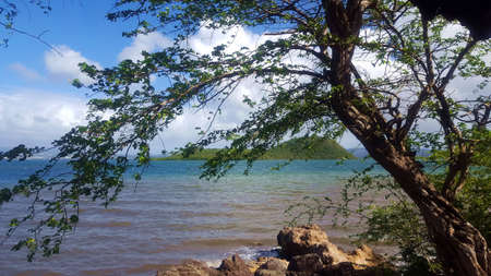 Islet with tropical vegetation