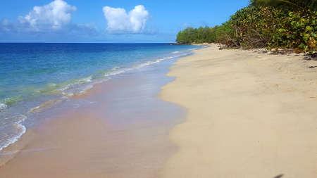 Deserted beach on caribbean island