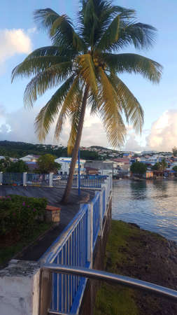small village in the tropics Sainte Luce, Martinique