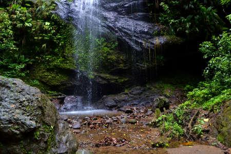 Waterfall and wild nature Stock Photo