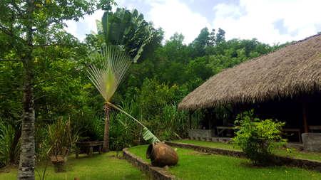 Ancient Caribbean environment Stock Photo