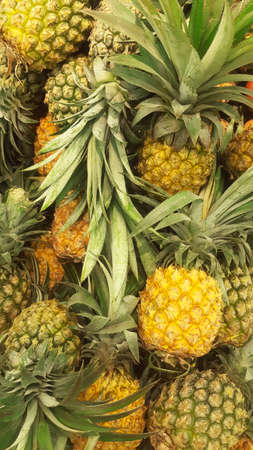 Pineapple Fruits Background