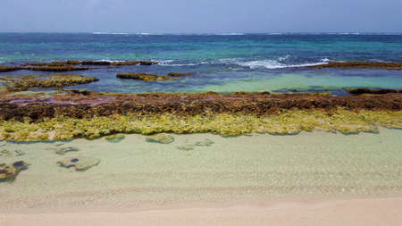 Beach protected by Coral reef