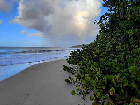tropical sandy coast Stock Photo
